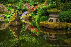 oregon, japanese, garden, portland, pond, serene, zen, reflection