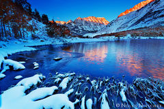 north, lake, snow, fall, color, inyo national forest, eastern sierra, california