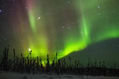 shooting, star, brooks, range, artic, circle, aurora borealis, aurora, northern lights, alaska