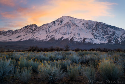 eastern sierra, sierra nevada, california, sierra, owens valley, mountain, tom, mt. tom, snow, winter, sunset, sage