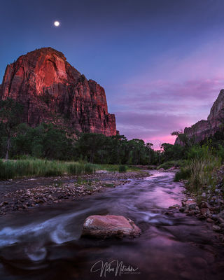 zion, national park, virgin river, utah,