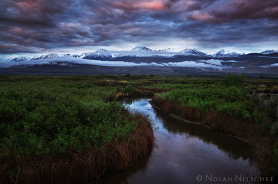 spring, owens valley, sunrise, river, , eastern sierra, california
