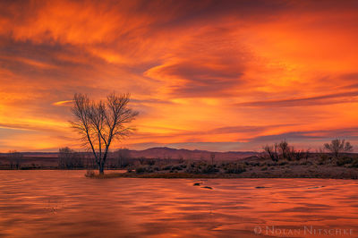 owens valley, pond. frozen, sunset, vivid, eastern sierra, california