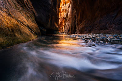 zion, national park, virgin river, utah, light, narrows