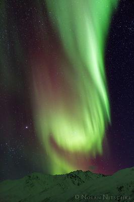 The Dragon Aurora