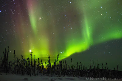 shooting, star, brooks, range, artic, circle, aurora borealis, aurora, northern lights, alaska