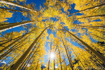 maroon bells, snowmass, aspen, wilderness, white river, sky, colorado