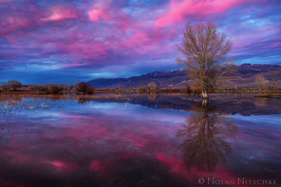 sky, reflection, sunset, owens valley, bishop, eastern sierra, california