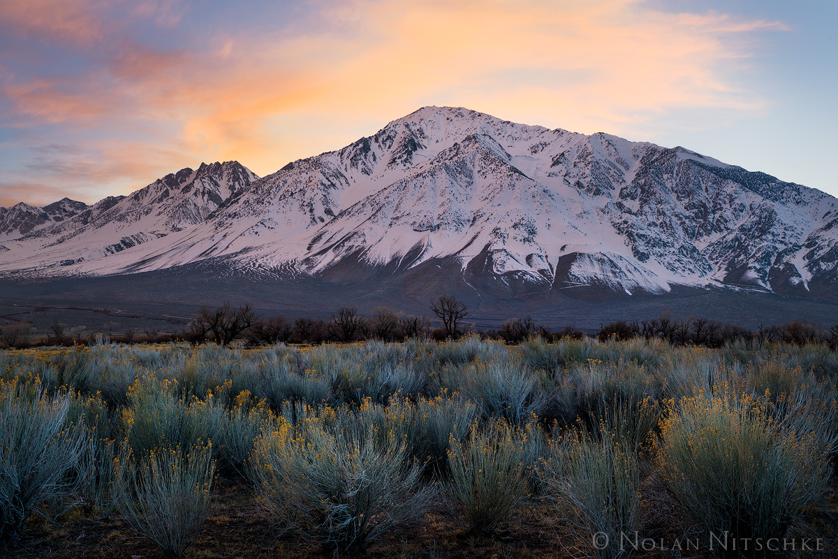 eastern sierra, sierra nevada, california, sierra, owens valley, mountain, tom, mt. tom, snow, winter, sunset, sage, photo