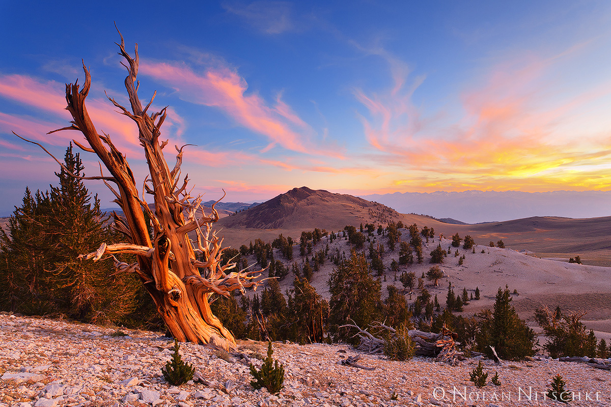 sunset, eastern sierra, palisades,