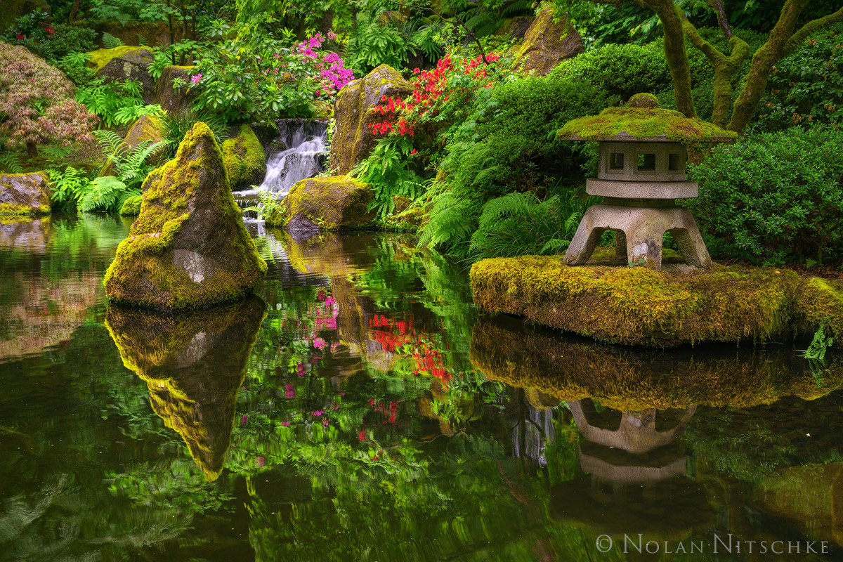 oregon, japanese, garden, portland, pond, serene, zen, reflection, photo