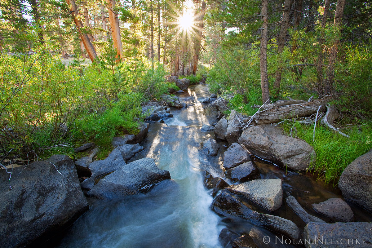 inyo national forest, , high sierra, sierra nevada, photo
