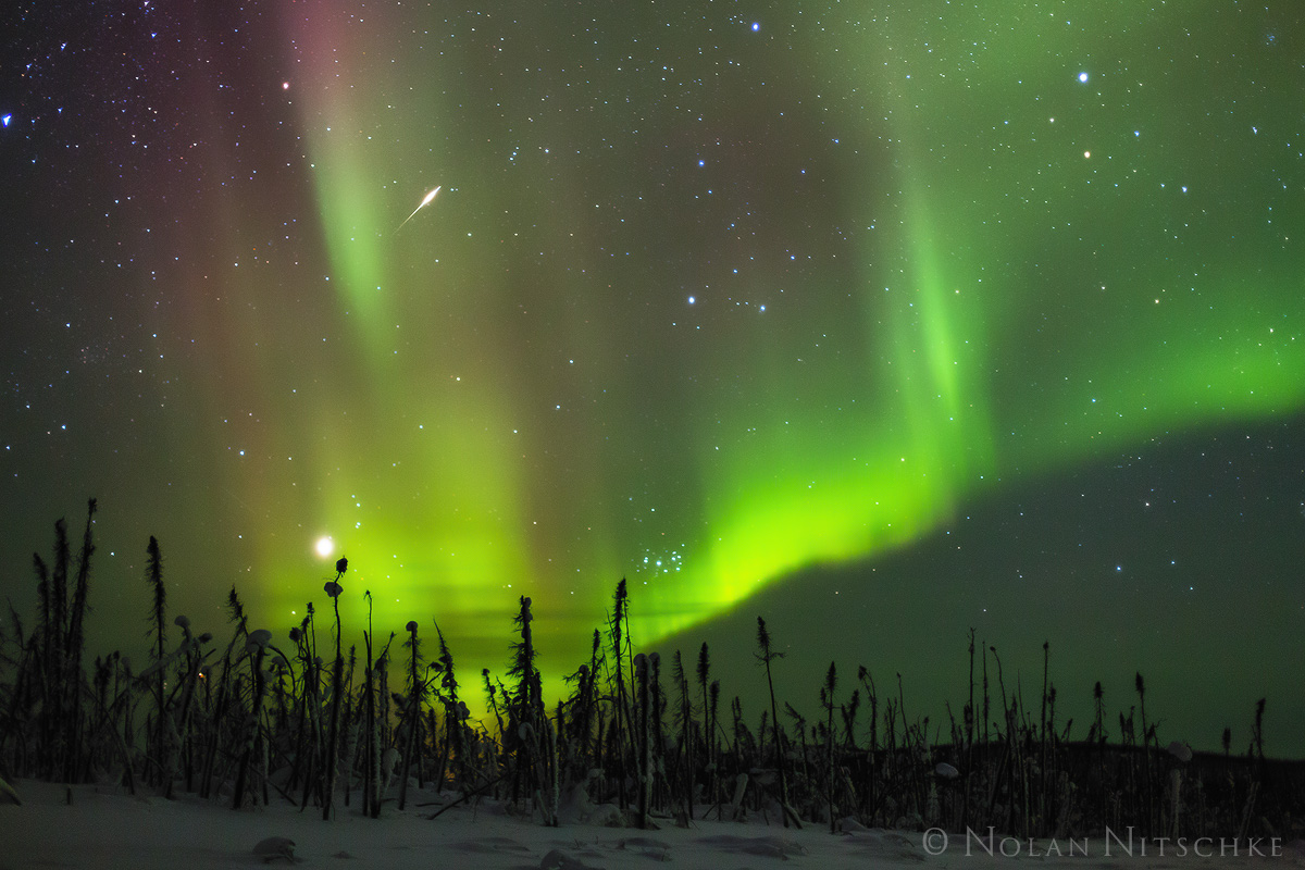 shooting, star, brooks, range, artic, circle, aurora borealis, aurora, northern lights, alaska, photo